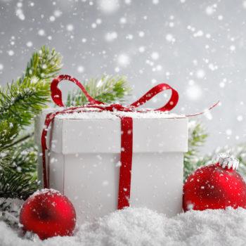Życzenia świąteczne od Fundacji Kobieta i Natura